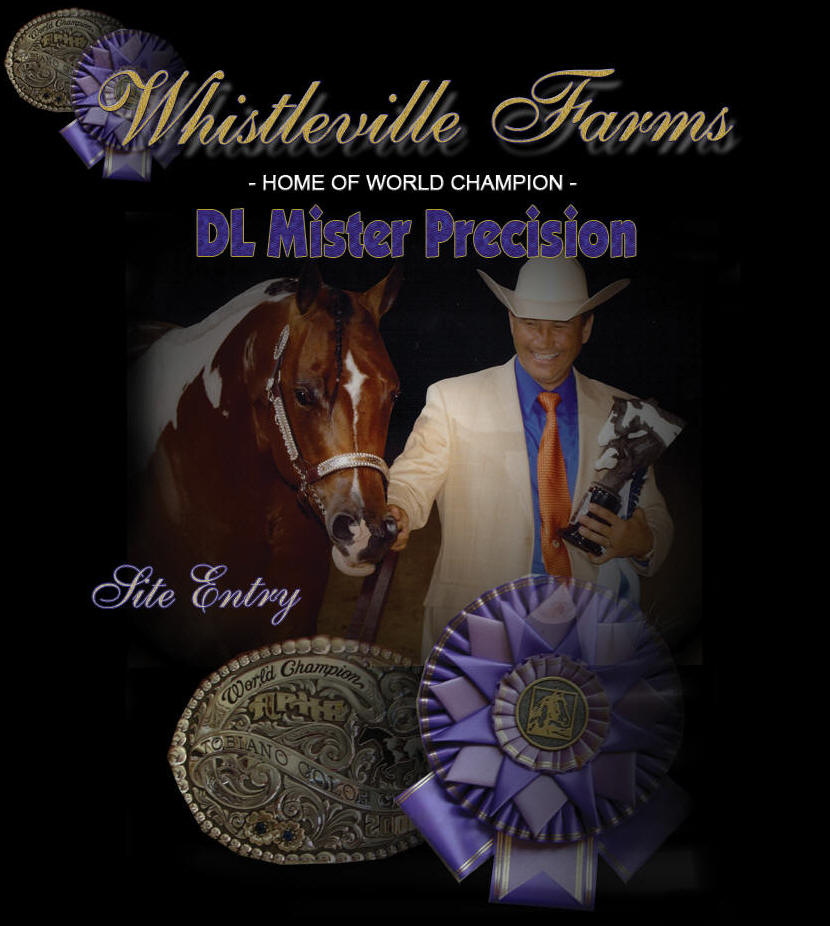 Welcome to Whistleville Farms, home of World Champion Tobiana Stallion, DL Mr Precision!